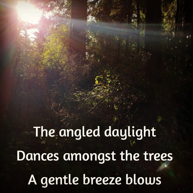 Angled Daylight