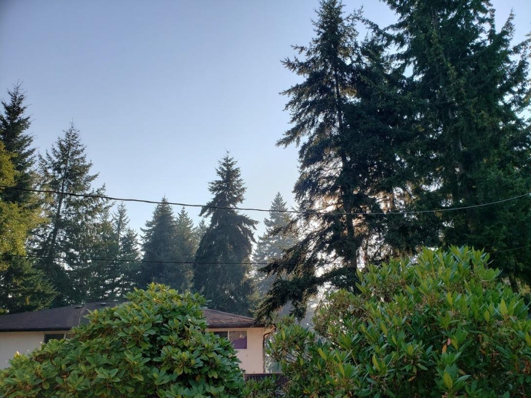 Smoky skies in Seattle, September 8, 2020