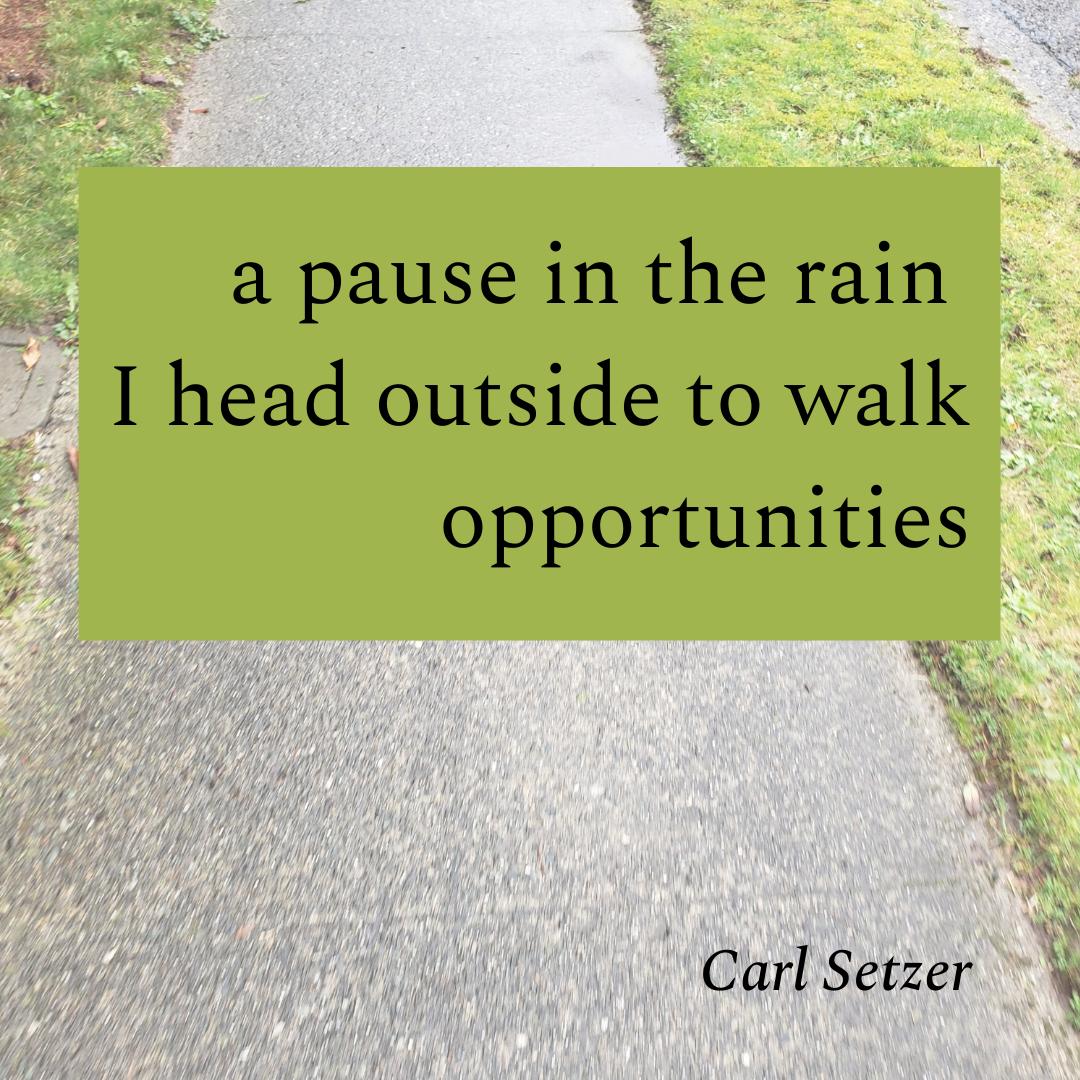 A Haiku - Pause in the Rain
